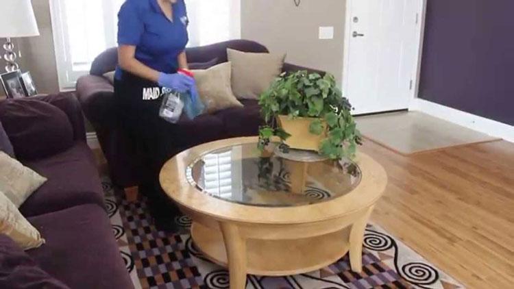 تمیزی خانه برای جلوگیری از ورود حشرات
