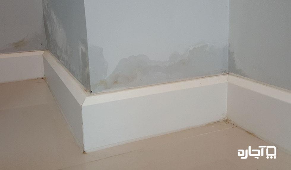 چه روش هایی برای رفع نم دیوار گچی خانه وجود دارد