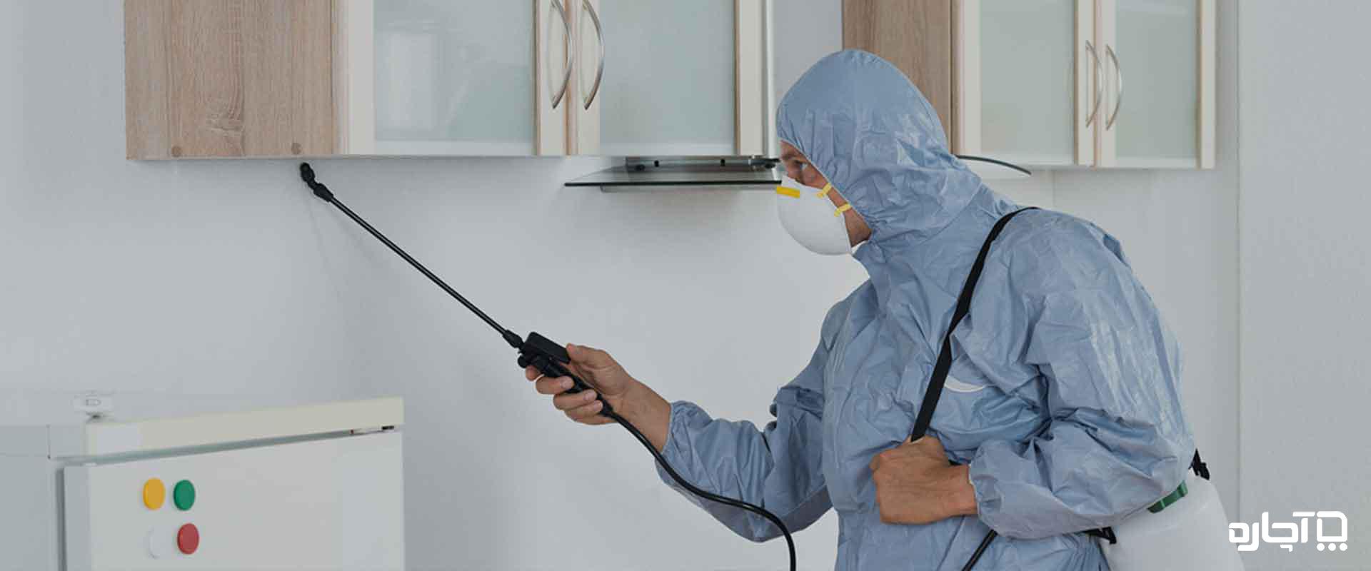 روش های موثر به غیر از سمپاشی برای محافظت از خانه